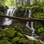 St Blasien - Windberg Wasserfälle