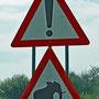 Achtung, Elefanten könnten die Weiterfahrt behindern.