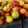 Nature's Harvest, Apples