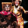 CATS Programmheft (mit Kelly Robertson als Gus)©Brinkhoff/Mögenburg, Hamburg