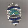 POLICIA DE HAWAII