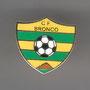 CF BRONCO