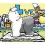 Ancora una volta dal veterinario...eh no!