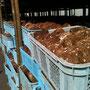 物資輸送の拠点となっているシイタケ工場