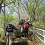 展望台脇の登山道から歩き始めました。