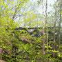 三頭山東峰の展望デッキ