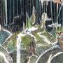 03/03/☆『 記憶 』 ---使用:STAEDTLER pigment liner0.05、透明水彩、白ペン