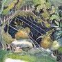 12/12/ ☆『 星降る夜に 』 ---使用*ORAWING PEN0.05、透明水彩、白ペン