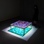 Liqiud prism/2016/偏光フィルム・アクリル・木材/H40×W100×D100cm