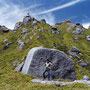不思議な姿の山はいくつも見てきたが、ここは群を抜いて摩訶不思議。まるで恐竜の卵が埋まっているみたい。山頂からの展望も最高! 屋久島 永田岳 鹿児島