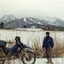 雪の景色は不思議と心が落ち着いたりする。                                            もちろんこれ以上積もってしまうと、バイクでの旅はかなりきついものになってしまうのだけど。             大山周辺 鳥取