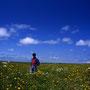 雲流れる大空と、花咲き乱れる大地の間で、僕は旅人以外の何者でもなくなる。旅人の聖地、北海道――。そこはまるで魔法のように、完璧な自由と感動を与えてくれる。<猿払原野>