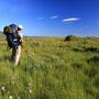草原の空に飛ぶ真っ白な雲。こんな風景に憧れない旅人がいるだろうか。雲はいつも僕をさらに遠い地へと誘う。まだまだもっとおまえは自由に生きていけるぞと。<Lofoten-NORWEY>