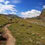草原に続く道。これはヨーロッパアルプスのモデル的な散歩道だ。自由に道から外れて歩けばいい。ここに訪れるのはわずかな数の人間だけだから、歩く行為が自然を傷つけたりはしない。<Aosta-ITALIA>