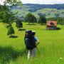 スイスの低地風景は、想像していた以上に綺麗だった。童話の世界の風景がそこにあった。<ルチェルン周辺――スイス>