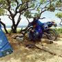 日本一気に入った野宿地は、人が住む場所では日本最南端の小島のビーチ。                              木陰は涼しく、遠くからは波の音。人の姿もめったになく、ゆったりとした一週間を過ごす。             波照間島西部 沖縄