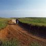 原野の中を駈ける! かつては日本にも、こんな場所がたくさんあったのだろう。ここは自衛隊の演習場。テントを張ったら、翌朝、戦車や自衛官に取り囲まれていた…。 大野原演習場 長崎、佐賀