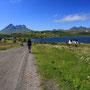 牧歌的な風景を歩けるのは、ヨーロッパの旅での大きな喜びの一つ。正面からやってくる自転車の母子は、今朝僕のテントの下の道を走っていった親子だ。買い物をしてきたのだろう。<Lofoten-NORWEY>