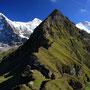 不思議な対比を見せる山。背後に聳えるのがアイガー、メンヒ、ユングフラウ。手前の山は不明。テントが張れそうな場所を探して、コースを外れ小山に登る。するとこんな景色が見られたわけだ。<Berner-Oberland-SCHWEIZ>