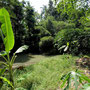 Cempaka land for sale