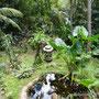 Properties for sale West Bali, Tabanan.