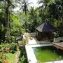Bali Real Estate for sale located in Tabanan.