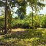 Freehold land for sale North Sanur, Bali.