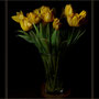 TulpenTriptichon