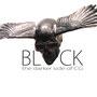 BLACK von Chemical Guys - speziell für schwarze Lacke entwickelt