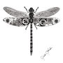 -Title: Dragonfly -Size: H170xW130(oval) -Material: pigment ink, Resin, Brass Foil on Illustration board