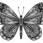 -Title: Butterfly 01 -Size: H148xW100 -Material: pigment ink on Illustration board
