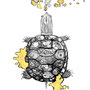 -Title: Nijimi Turtle -Size: H192xW140(oval) -Material: Pigment ink, Gold foil, Dye ink on Illustration board