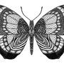 -Title: Butterfly 02 -Size: H148xW100 -Material: pigment ink on Illustration board