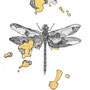 -Title: Nijimi Dragonfly -Size: H175xW125(oval) -Material: Pigment ink, Gold foil, Dye ink on Illustration board