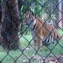 オアフ島の動物園