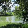 Fischweiher bei Riedl