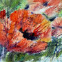 Poppy dream / watercolour batik on japanese rice paper -  30x40 cm incl PP