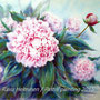 Peony queen - soft pastel - SOLD