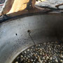 Seidenkokons im kochenden Wasser um einen Seidenfaden zu erzeugen
