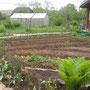 Lenas Garten Frühjahr 2012