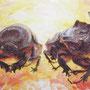 Romeo und Julia, 2013, 50x66 (49x62), Farbstift + Aquarell / Aquarellpapier
