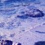 テティス湖の様子