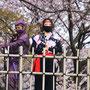 忍者の出迎え(姫路城お花見にて)