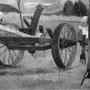 La faneuse - 1954-1955 - Hst - 130/162 - ©Adagp Paris 2014