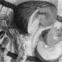 Le potiron - 1957 - Hst - 81/100 - ©Adagp Paris 2014