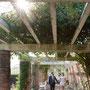 Fotograf Hochzeit Kosten Ganzer Tag