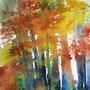 Herbstfarbrausch