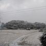 そして吹雪の朝