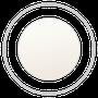 2013 White Belt