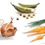 """Gemüse"", Illustration für Speisekarte    Technik: Marker & Fineliner"